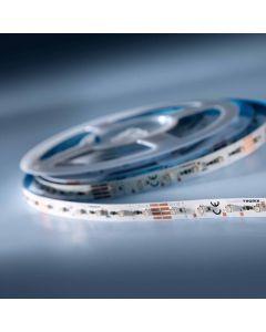 LumiFlex 300 Striscia LED flessibile RGB 24V 60 LED/m 5m (461 lm/m 11W/m)