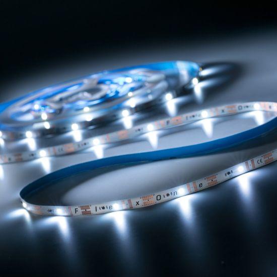 FlexOne 100 Samsung Striscia LED bianco freddo 6500K 6640lm 12V 20 LED/m 5m bobina (1328lm/m 16.8W/m)
